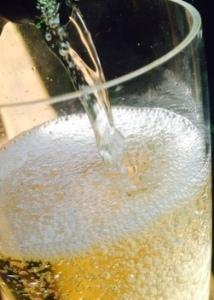 champagne bubbles 2