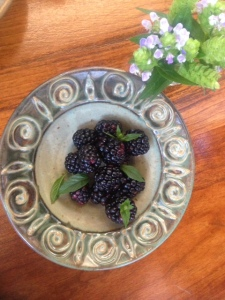 red hen blackberries