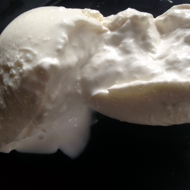 barrata cheese