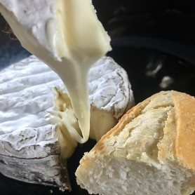 EF Brie Cheese with bread
